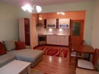 Pronájem bytu 1+kk v osobním vlastnictví 39 m², Chýně