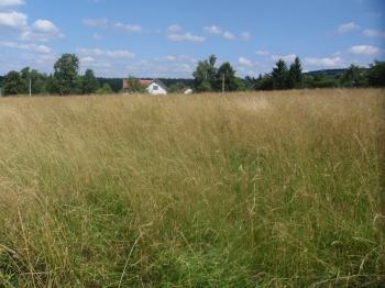Prodej pozemku 1705 m², Nový Oldřichov