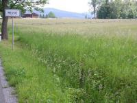 Prodej pozemku 7273 m², Zlaté Hory