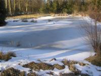 Rybník zprava (Prodej chaty / chalupy 20 m², Mikulovice)