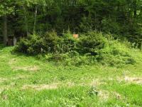Posezení uschované v zeleni   (Prodej pozemku 3757 m², Mikulovice)