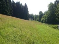 pohled na přes sjezdovku na druhý vlek (Prodej pozemku 70484 m², Sobotín)