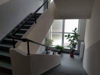 Pronájem komerčního objektu 33 m², Šumperk