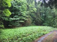 Prodej pozemku 492 m², Loučná nad Desnou