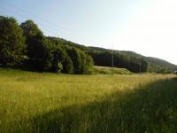 Prodej pozemku 3640 m², Vernířovice