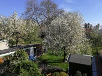 Prodej domu v osobním vlastnictví 180 m², Zábřeh