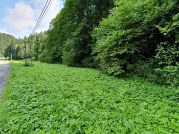 Prodej pozemku 3571 m², Jindřichov