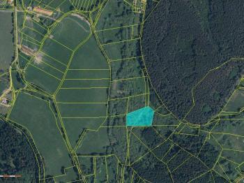 k.u.Chvalšovice, obec Dřešín, pořízeno na CUZK.cz - Prodej pozemku 11098 m², Dřešín
