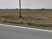 pohled na jižní část pozemku (Prodej pozemku 2679 m², Třeboň)