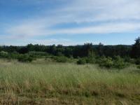 Výhled z horní části pozemku (Prodej pozemku 5729 m², Slabčice)