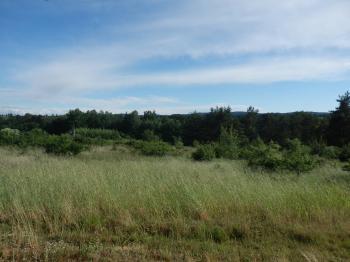 Výhled z horní části pozemku - Prodej pozemku 5729 m², Slabčice
