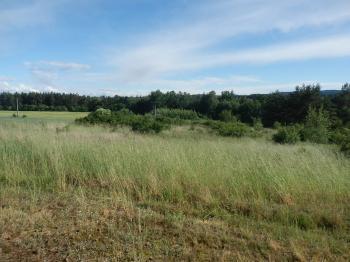 Pozemek s trafem - Prodej pozemku 5729 m², Slabčice