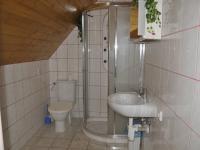 Garsoniera - koupelna (Pronájem domu v osobním vlastnictví 295 m², Písek)