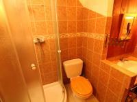koupelna s toaletou (Prodej bytu 2+1 v osobním vlastnictví 57 m², Plzeň)