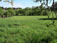 Velká zahrada (Prodej chaty / chalupy 77 m², Sedlice)