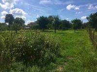 Prodej pozemku 1000 m², Planá