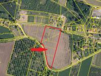 situace parcely (Prodej pozemku 8689 m², Malovice)