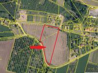 situace dle katastru nemovitostí (Prodej pozemku 8689 m², Malovice)