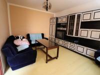 Druhý pokoj (Pronájem bytu 1+1 v osobním vlastnictví 37 m², Strakonice)