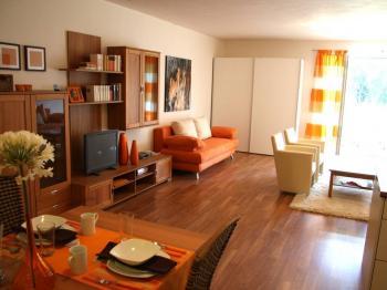 Prodej bytu 1+kk v osobním vlastnictví, 63 m2, Horní Planá