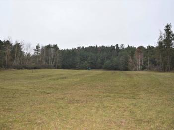 Pohled na pozemek - Prodej pozemku 6626 m², Dobev