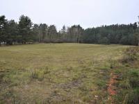 Pozemek - Prodej pozemku 6626 m², Dobev