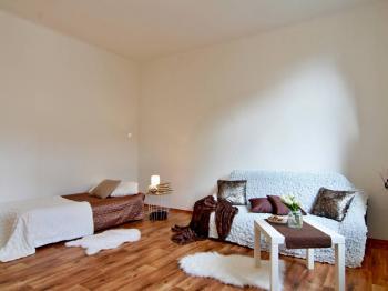 byt 1+1 Matice Školské České Budějovice - Prodej bytu 1+1 v osobním vlastnictví 43 m², České Budějovice