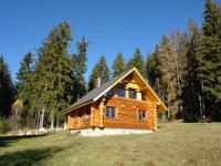 Prodej domu v osobním vlastnictví 170 m², Strážný