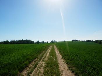 Prodej pozemku 3187 m², Hosín