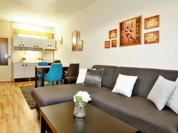 Prodej bytu M. Chlajna, České Budějovice - Prodej bytu 1+kk v družstevním vlastnictví 32 m², České Budějovice