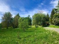 Pozemek na druhé straně cesty  - Prodej pozemku 9725 m², Borová Lada