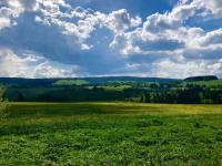 Nádherné místo za každého počasí  - Prodej pozemku 9725 m², Borová Lada