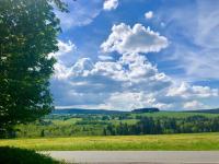 Pohled z pozemku na Nové Hutě - Prodej pozemku 9725 m², Borová Lada