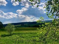 Krásný výhled do okolí - Prodej pozemku 9725 m², Borová Lada