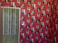 Pronájem bytu 3+KK ul. Komenského České Budějovice - pokoj - Pronájem bytu 3+kk v osobním vlastnictví 76 m², České Budějovice