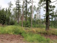 Prodej pozemku 790 m², Chlum