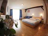 Prodej domu v osobním vlastnictví, 528 m2, Frymburk