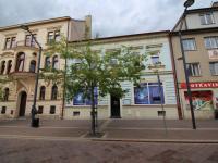 Pronájem komerčního prostoru (obchodní) v osobním vlastnictví, 346 m2, České Budějovice