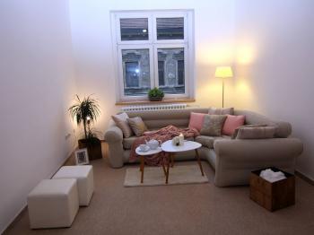 Pronájem bytu 2+kk v osobním vlastnictví 54 m², České Budějovice