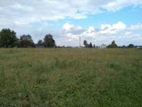 Prodej pozemku 9264 m², Rychvald