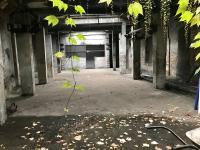hala v budově č.2 (Pronájem komerčního objektu 4500 m², Karviná)