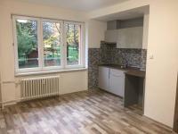 Pronájem bytu Garsoniéra v družstevním vlastnictví 24 m², Ostrava