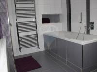 koupelna (Pronájem bytu 2+kk v osobním vlastnictví 50 m², Ostrava)