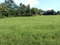 Prodej pozemku 2646 m², Těrlicko