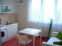 Pronájem bytu 1+1 v družstevním vlastnictví 41 m², Ostrava