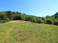 Prodej pozemku 1441 m², Suchomasty