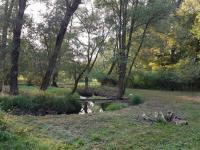 Loukou protéká Kocába potok (Prodej pozemku 14643 m², Stará Huť)
