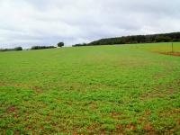 Prodej pozemku, 76613 m2, Bratřínov