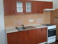 Pronájem bytu 1+1 v osobním vlastnictví 42 m², Lahošť