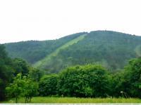 Prodej pozemku 474 m², Mikulov
